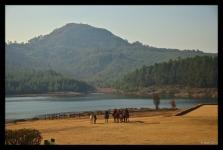 View from Troutbeck Inn, Nyanga, Manicaland, Zimbabwe