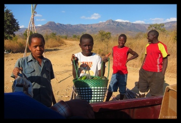 Selling Vegetables in the Eastern Highlands, Zimbabwe