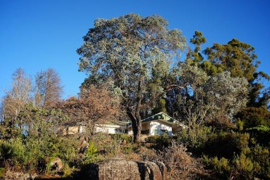 Hornbydale, Troutbeck, Zimbabwe
