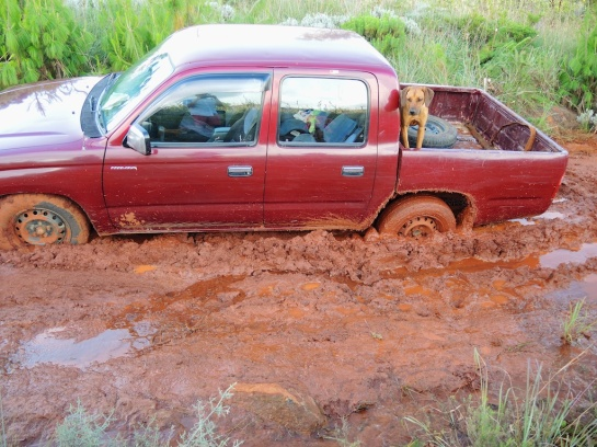 Megan is Stuck in the Mud, Troutbeck, Zimbabwe