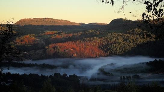 Early Morning Fog over Troutbeck Lake, Zimbabwe