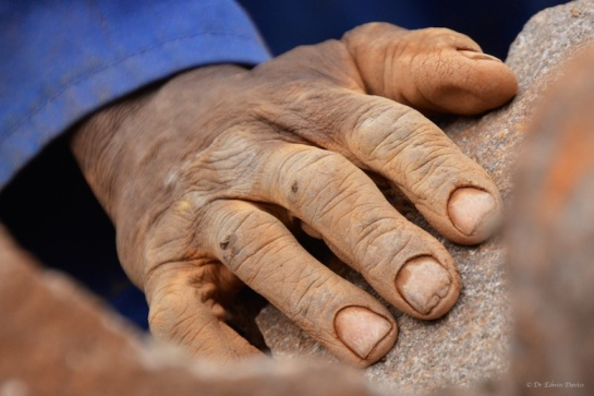 The hands that built Hornbydale