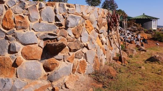 Stone built plasma membrane