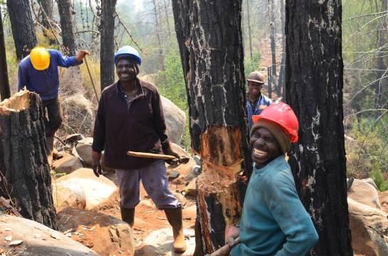 The happy woodsmen