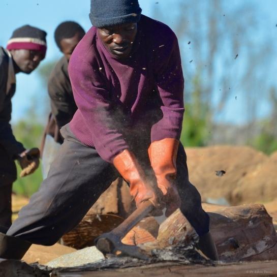 Tongai trimming and shaping