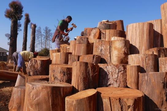 Tendai hammering a smaller infilling log