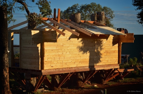 Trusses and rafters