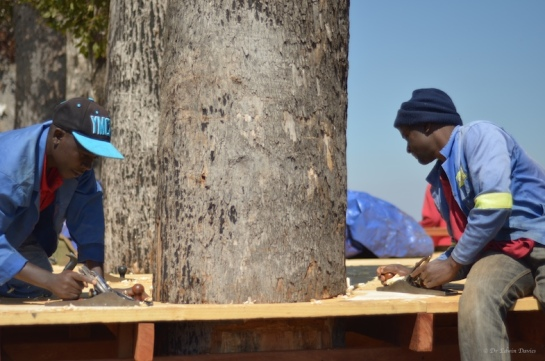 Flooring round a tree trunk? - Of course!