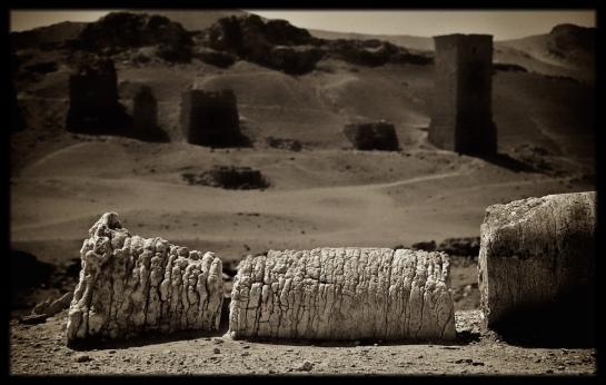 Eastern Highlander finds Palmyra